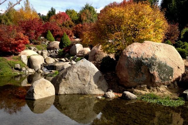 Japanese reflection pond