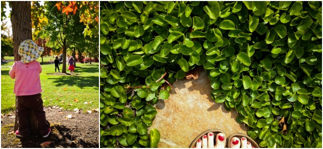 ground cover with kids combo