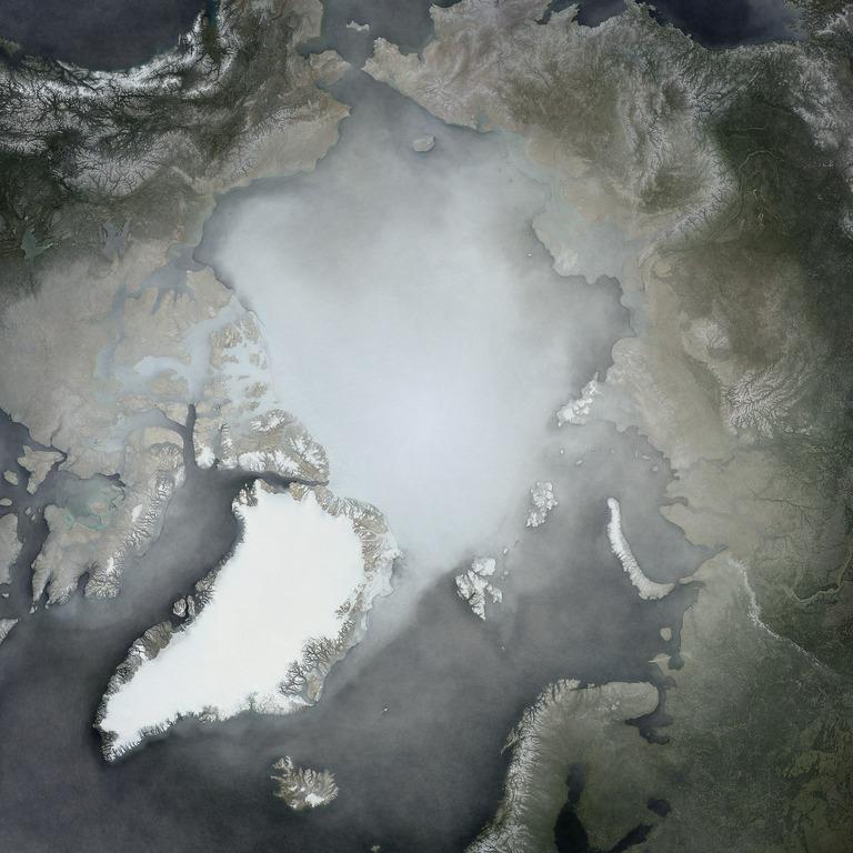 Chalie-Loyd-Artic